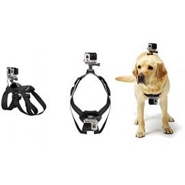Harnais pour chien avec fixation GoPro