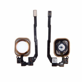 Nappe complète bouton home + bouton Or iPhone 5S